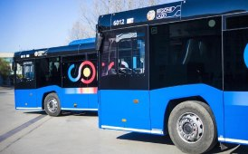 Piano Bus Roma: Anav preoccupato per il futuro del trasporto pubblico di linea