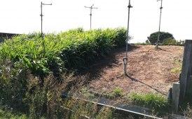 Erosione zero e nessuna perdita di suolo nonostante le piogge torrenziali