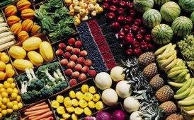 Al via a settembre Foody City Logistics